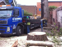 Lifting timber using the Hiab crane