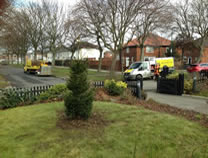 Tree out, stump grind & replant in Redcar.